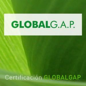 cartera_globalgap
